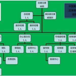 中国青年海归协会足球俱乐部组建工作进展