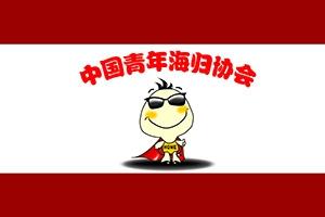 《中国青年海归协会分会管理章程》发布